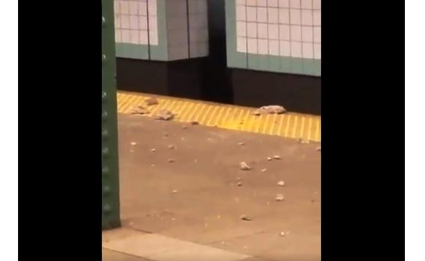 Los escombros en el suelo