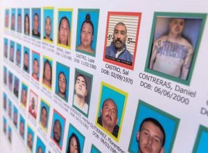 """Duro golpe a los """"Norteños"""" en California. Decenas de arrestados y droga decomisada"""