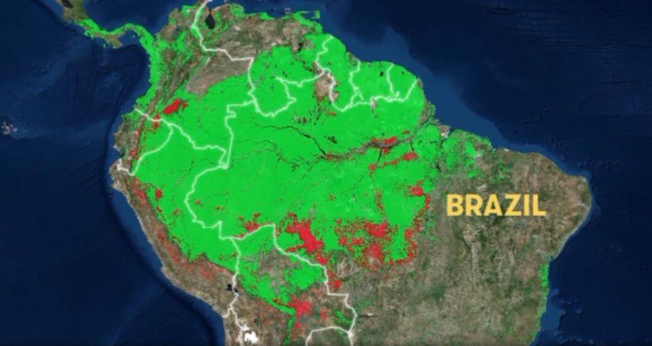 La destrucción del Amazonas acelera en un 60%