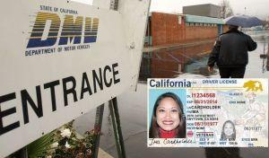 DMV cerrará todas sus oficinas en California para capacitar a empleados
