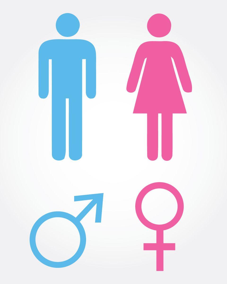 Letras: Masculino, femenino… y epiceno