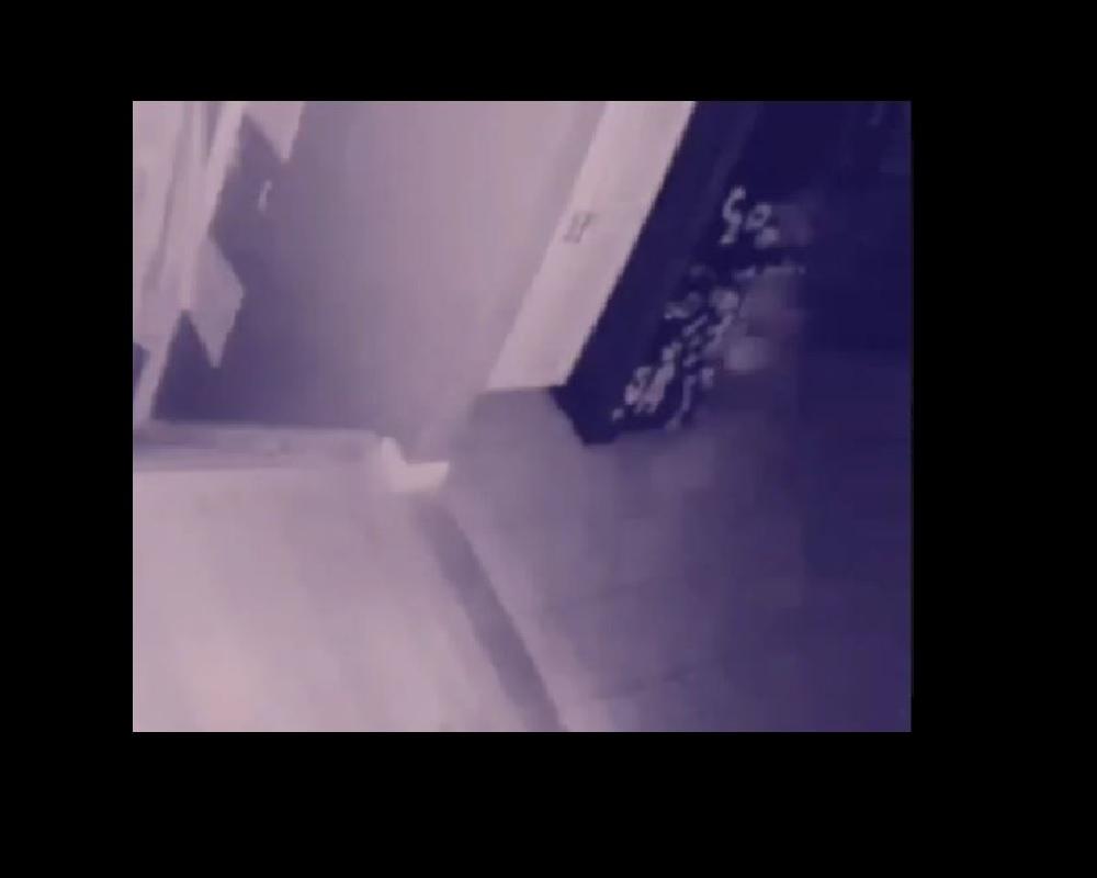 VIDEO: Cámara de seguridad capta el fantasma de un niño corriendo en las escaleras de una casa
