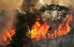 Llega a Bolivia el avión bombero más grande del mundo para aplacar los incendios en el Amazonas