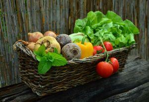 ¿Qué son los oligoelementos y cuáles son sus beneficios para la salud?