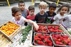 20 estados se unen para rechazar limitaciones de acceso a cupones de alimentos