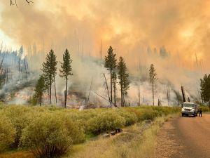 Incendio Walker en California: más de 50,000 acres consumidos en el mayor fuego del año