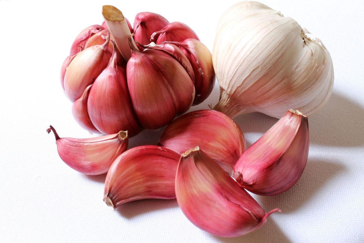 ¡No podrás creerlo! Espectaculares beneficios medicinales del ajo