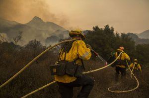 El Servicio Forestal de California ofrece miles de empleos temporales