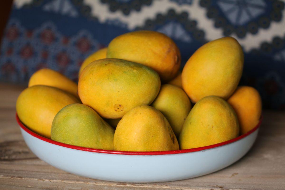 Temporada de mangos: Descubre su inmenso poder medicinal y prácticas ideas para disfrutarlos