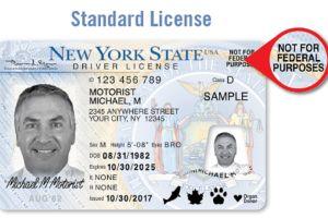 Alertan a indocumentados de 4 aspectos al solicitar licencia de conducir en Nueva York