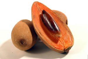 Mamey: suculenta fruta mexicana llena de bondades curativas
