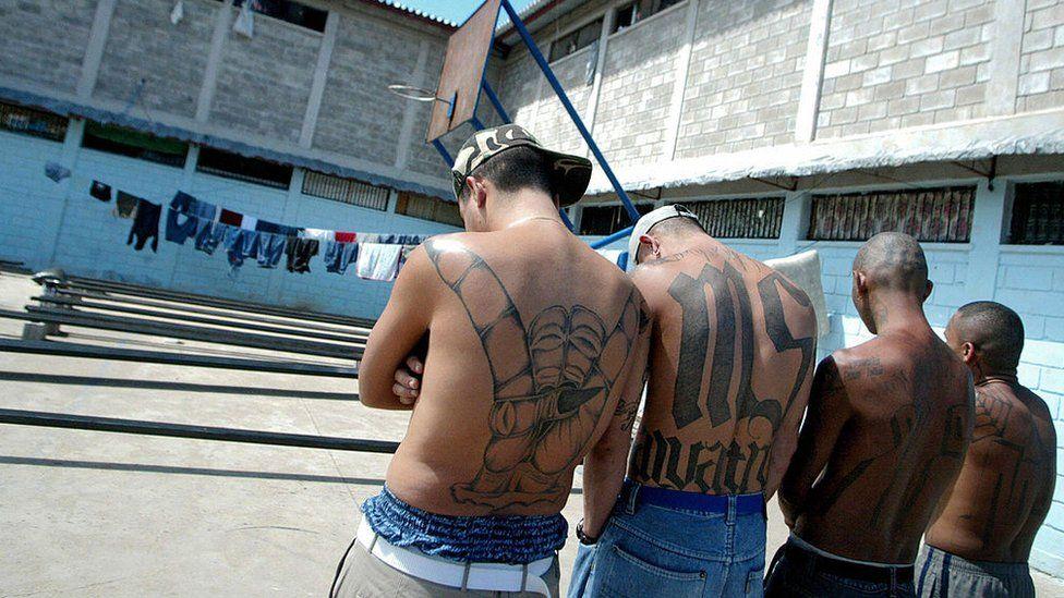 """MS13: 5 claves para entender el """"histórico"""" juicio a los pandilleros de la Mara Salvatrucha en El Salvador"""