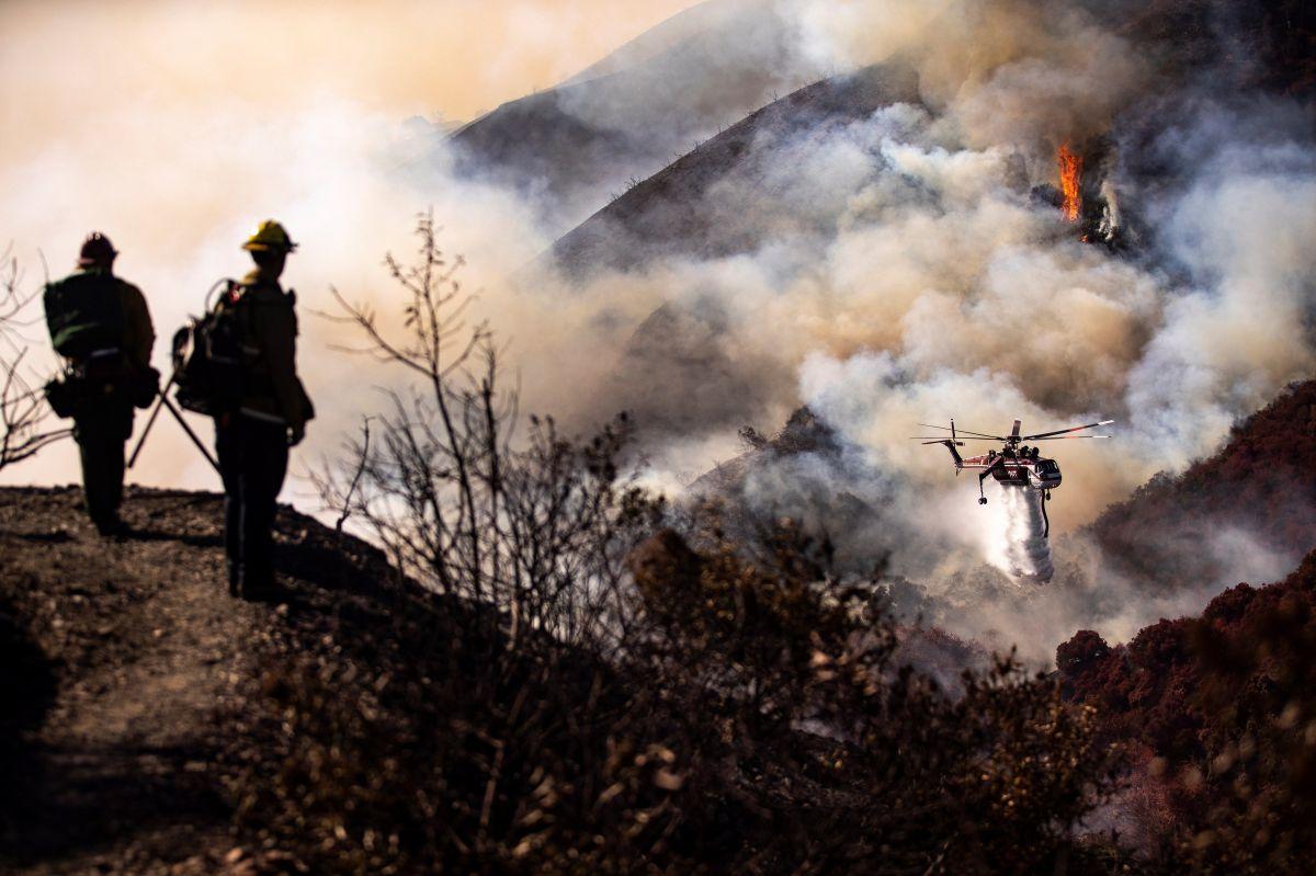 Obras de arte de gran valor fueron salvadas de las llamas del incendio Getty en Los Ángeles