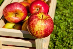 Alertan por posible contaminación de manzanas en ocho estados