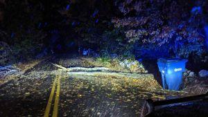 """Fuertes vientos, lluvias y cortes de luz, la tormenta """"bomba"""" que golpea el noreste de EEUU"""