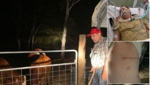 Texas: Su vaca lo ataca y casi lo mata, pero de cualquier forma se va quedar con ella