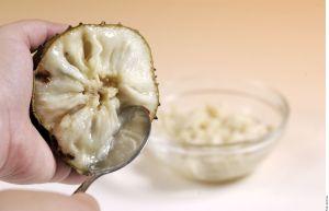 ¿Has probado la guanábana? Milagroso fruto exótico que cura enfermedades