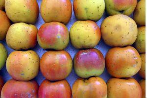 La fruta menos conocida de la primavera: El níspero y sus extraordinarios beneficios para la salud