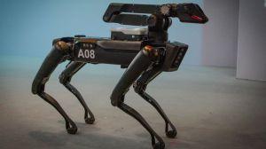 """El polémico uso de """"perros robot"""" por parte de la policía de Massachusetts"""