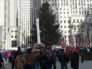 ¡El árbol de Rockefeller ya está instalado en Nueva York!