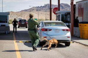 Menor de EEUU se pone creativo para cruzar la frontera con $100,000 en droga. Pero no salió bien