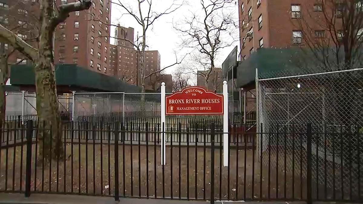 Niño cayó 9 pisos desde su hogar en El Bronx