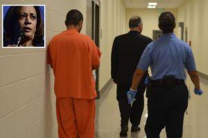 Kamala Harris denuncia plan de 'La Migra' contra prohibición californiana a cárceles para inmigrantes