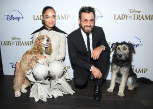 Lady and the Tramp con imágenes reales será el film estrella de Disney Plus en su lanzamiento