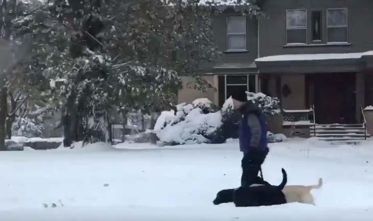 Rochester, la ciudad en Nueva York en la que han caído unas 16.1 pulgadas de nieve por tormenta en otoño