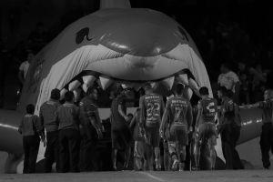 ¿Adiós al tiburón? Veracruz, más cerca de ser desafiliado que de jugar el Clausura 2020