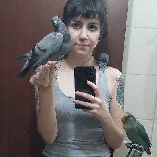 Las palomas transmiten muchas enfermedades, ¿verdad o mentira?