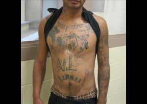 La Patrulla Fronteriza arresta a a mexicano miembro de la Mara Salvatrucha