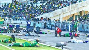 Abejas asesinas atacaron a jugadores en pleno partido