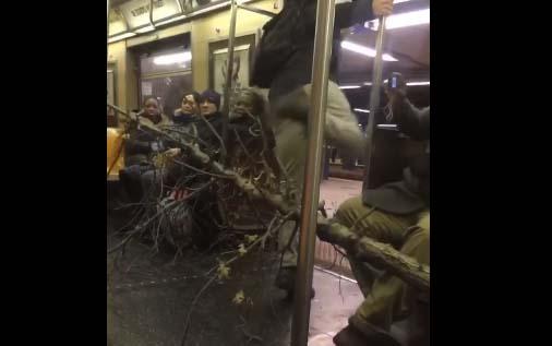 El imprudente pasajero del Subway de NYC que viajó con un árbol gigante en el tren