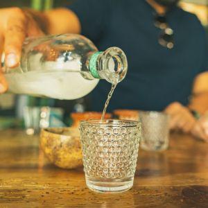 ¿Ya probaste el sotol?, el destilado del desierto de Chihuahua, Coahuila y Durango