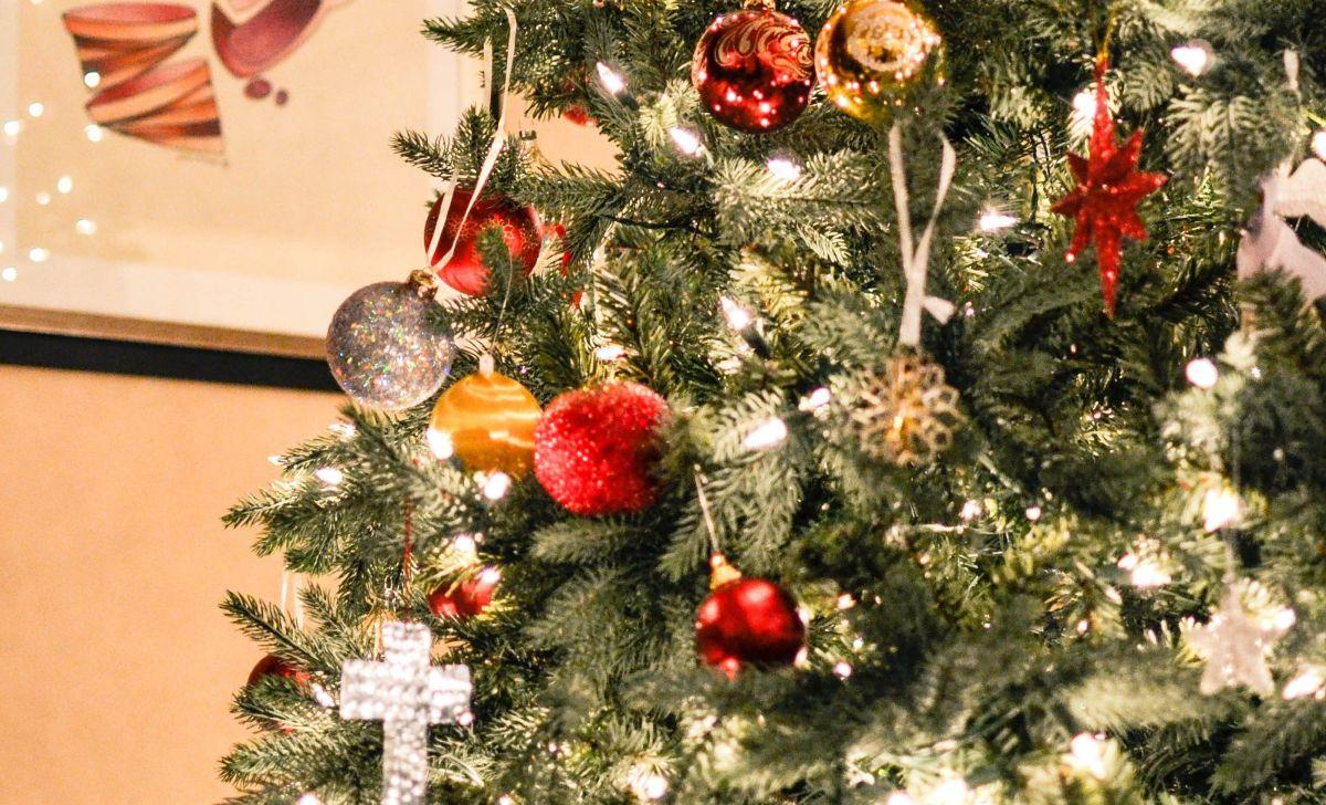 Pareja encuentra serpiente pitón en su árbol de Navidad