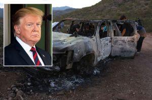 México agradece a Trump por no designar aún como terroristas a los cárteles de narcos