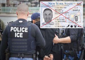 ¿ICE realizará operativos en Nueva York por licencias para indocumentados?