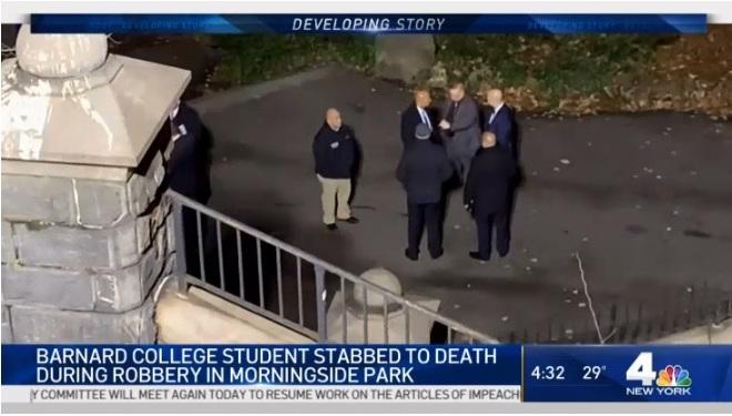 Matan a puñaladas a joven mujer durante robo en parque de Nueva York
