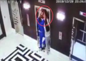 Salvan a un perro de morir estrangulado por un elevador en Florida