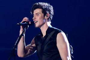 Shawn Mendes cancela su concierto en Brasil por grave enfermedad que podría afectar su carrera