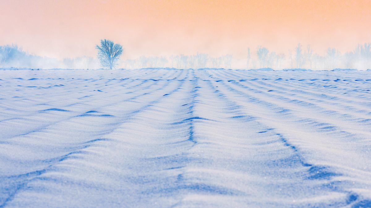 Hallan a pareja de septuagenarios enterrados en la nieve en Arizona