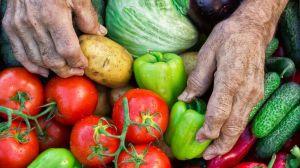 8 quemadores de grasa: alimentos que adelgazan naturalmente