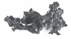 """Cómo la erupción del Vesubio hace casi 2,000 años """"convirtió el cerebro de una víctima en vidrio"""""""