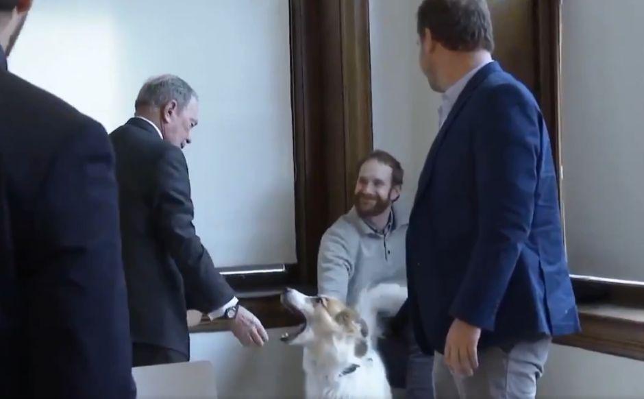 VIDEO: El extraño saludo de Michael Bloomberg a un perro