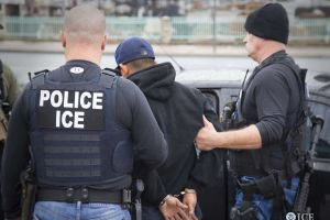 Presionan a la Legislatura Estatal para que apruebe ley que limitaría que policías de Nueva York colaboren con 'La Migra'