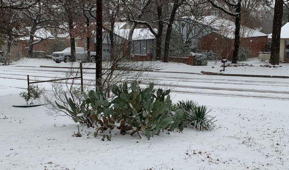 La nieve llegó al Norte de Texas después de las tormentas