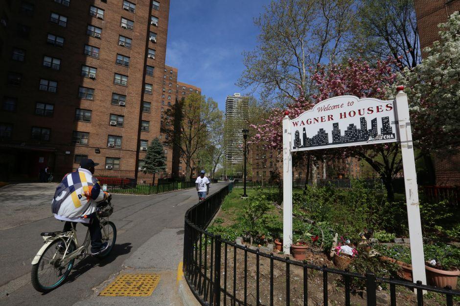 Chinches y cucarachas invaden los complejos de vivienda de NYCHA