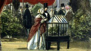 Las ingeniosas cajas de cristal que se volvieron poderosas armas para colonizadores británicos