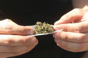 Eliminan 66,000 condenas por delitos relacionados con la marihuana: 53,000 personas beneficiadas
